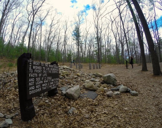 Site of Thoreau's Cabin