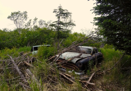 Cars near Homer Alaska