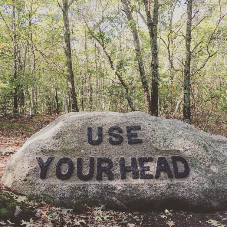 Babson Boulders USE YOUR HEAD